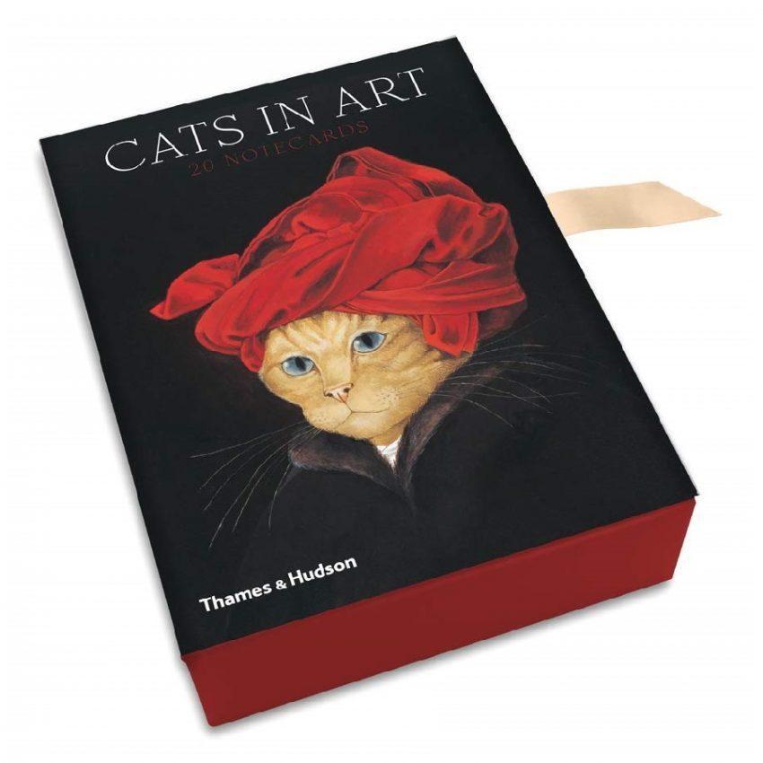 caja de tarjetas de notas diseño de gatos