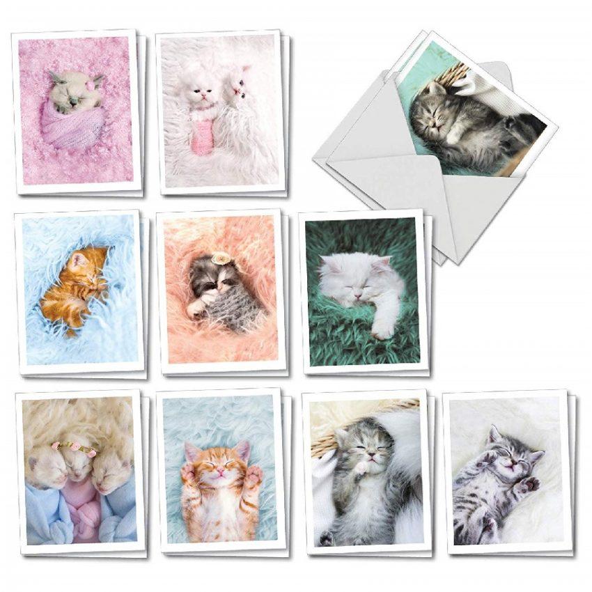 Juego de tarjetas en blanco con sobres de gatos