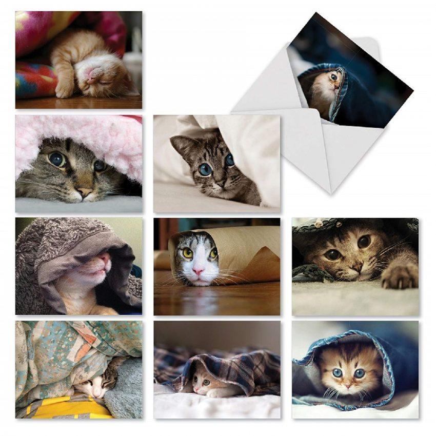 Juego de tarjetas con sobres de gatos