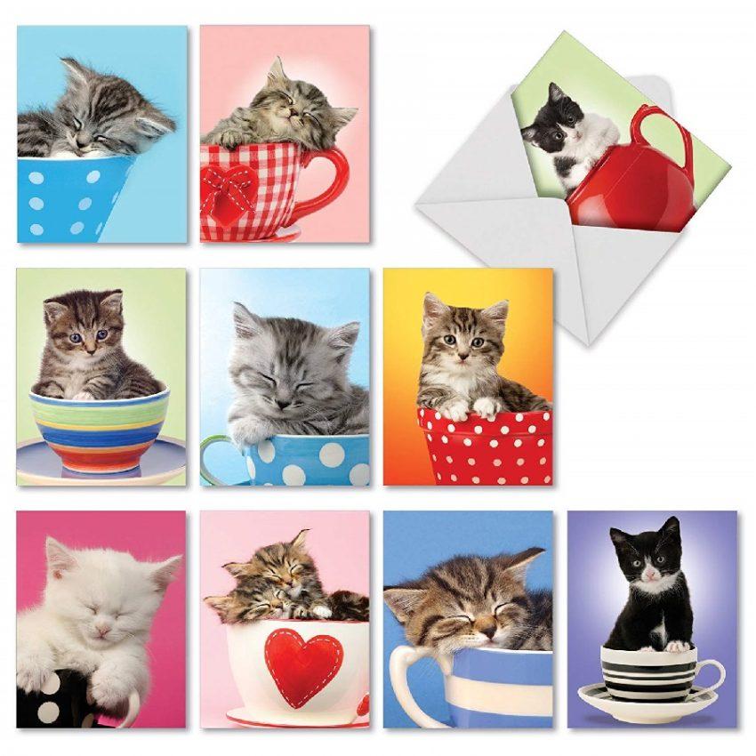 tarjetas de agradecimiento de gatos