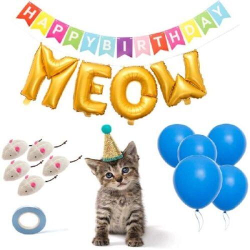 suministros para fiesta de cumpleaños para gatos