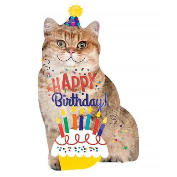 globo de fiesta de cumpleaños decoraciones de gatos